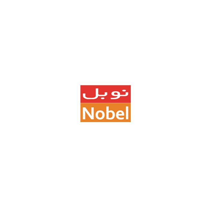 طراحی سایت آژانس مسافرتی نوبل